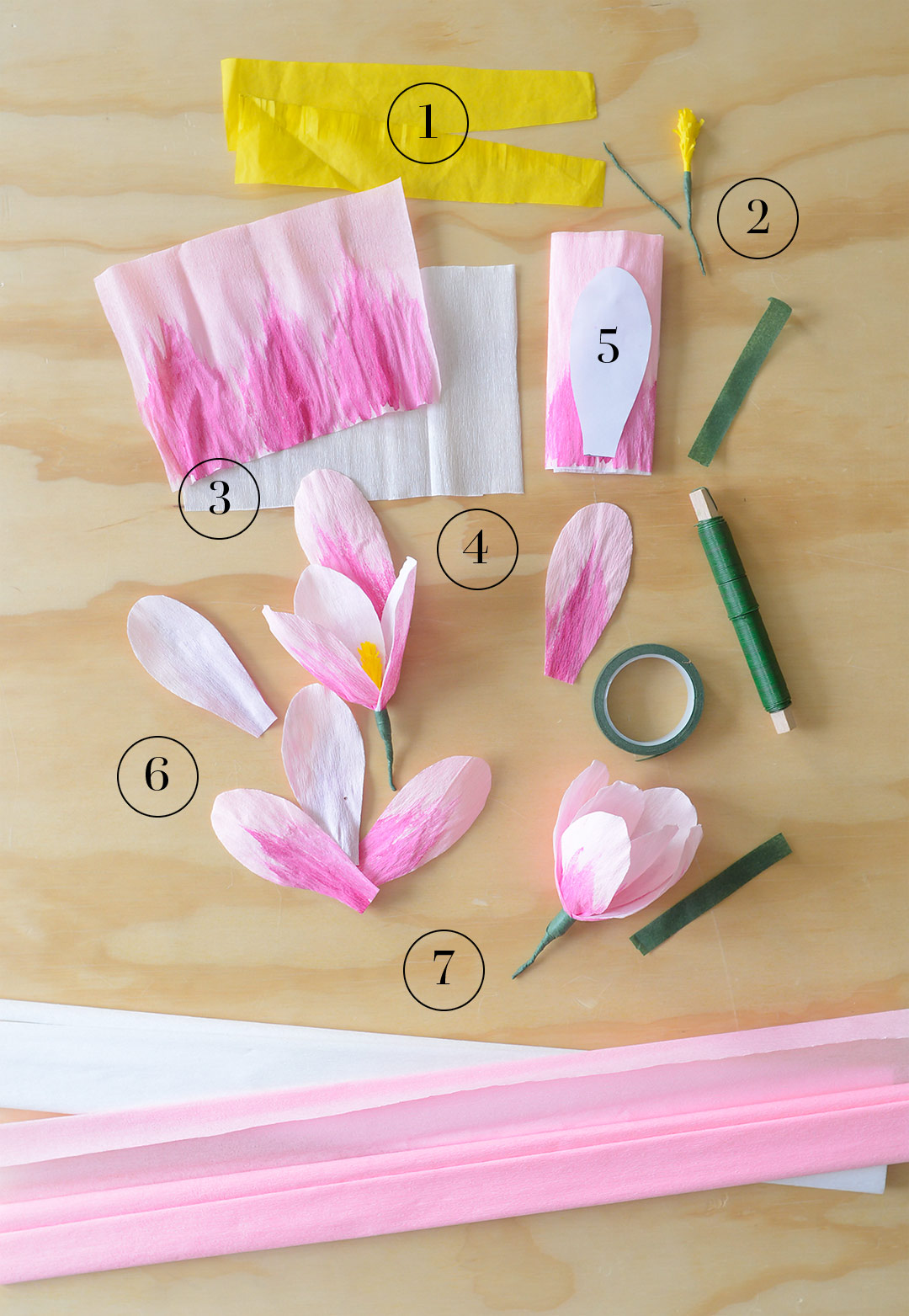 Instructions for paper magnolias