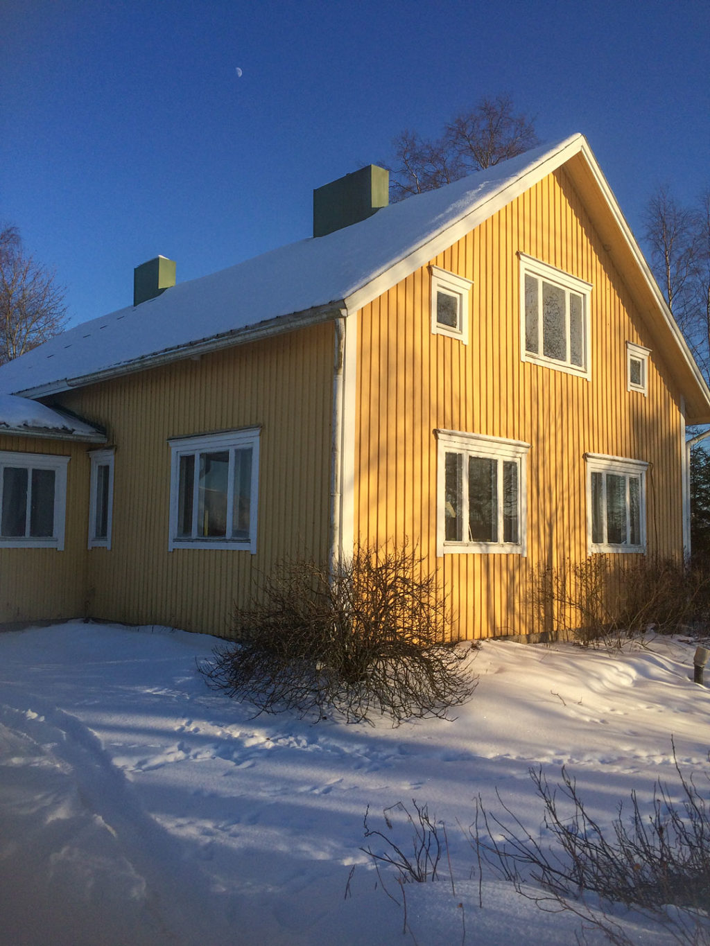 Roots aka Where Your Taste in Home Decor Comes from